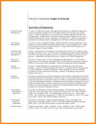Example Of Professional Summary For Resume by 11 Career Summary Example Resume Sections