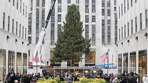 today welcomes rockefeller center christmas tree today com