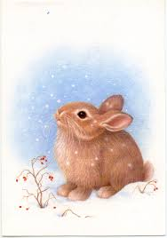 a bunny rabbit and then two bunny rabbits greeting cards