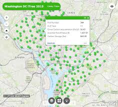 map us dc d c i tree ecosystem analysis map casey trees