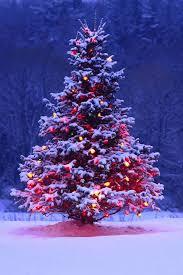christmas tree with snow fashionable christmas tree with snow and lights 7 5 foot chritsmas