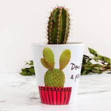 asian cactus ring holder images Cactus gifts and presents jpg