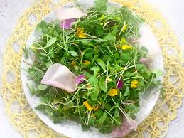 Edible Flowers Pretty Up Your Plate With Edible Flowers U2022 Joyous Health