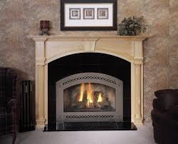 fireplace gas heater inserts fireplace design and ideas
