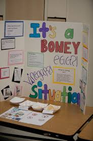 experimental and steam projects healdsburg science fair