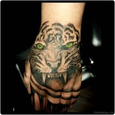 62 mind blowing tiger on