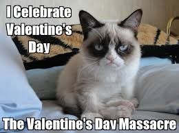 grumpy cat valentines how anti s day are you playbuzz