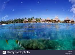 kia ora resort over water bungalo rangiroa french polynesia