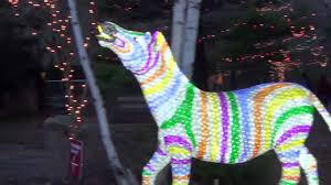 Lincoln Park Zoo Light Hours by Lincoln Park Zoo Lights 2015 Youtube