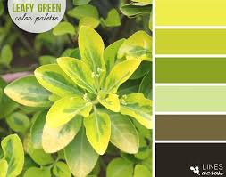 yellow green palette love the beautiful shades of green found in
