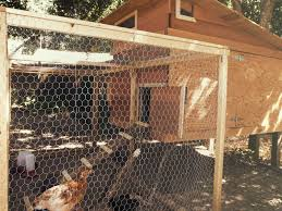 Best Backyard Chicken Coops by Coop Maintenance How To U0027s Chicken Saloon Chicken Saloon