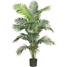 artificial plants nearly 6 ft paradise palm silk tree 5260 the home depot