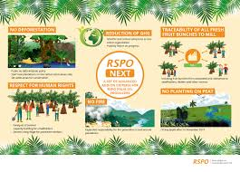 Next Rspo Next Rspo Roundtable On Sustainable Palm Oil