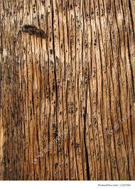 weathered wood weathered wood grain image