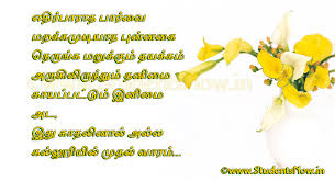 wedding quotes in tamil tamil friendship quotes friendship quotes