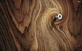 beautiful wood in 1920x1200 resolution