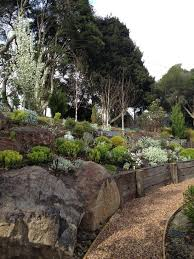 curved wood retaining wall landscape modern with gravel path