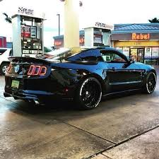 2015 Gt Mustang Black Best 20 Black Mustang Ideas On Pinterest Mustang Cars Ford