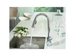 Moen Kitchen Pullout Faucet by Faucet Com 7175 In Chrome By Moen