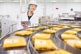 food processing quality control technician quality control worker with digital tablet at production line