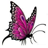 22 best girly butterfly images on butterflies 16 best ideas
