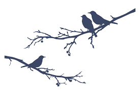 a bird sitting on a tree is never afraid of the branch breaking