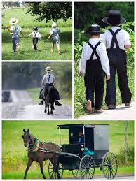 the amish photos by bill coleman sarah u0027s country kitchen