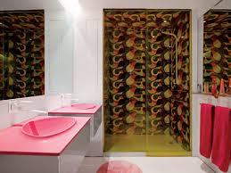 unique bathroom themes decorating clear