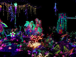 zoo lights houston 2017 dates houston zoo lights