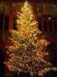 sandy u0027s motherhood blog how to decorate the tree martha stewart