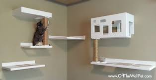 cat wall furniture new posh cat climbing furniture from off the wall pet plus get 20