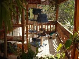 Patio Enclosures Cape Town by Articles With Cat Patio Enclosures Tag Cat Patio Enclosures Design