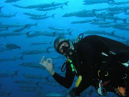 Wisconsin snorkeling images Underwater connection staff biographies steve lentz milwaukee jpg