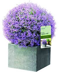 Purple And Blue Flowers Outdoor Artificial Plant White Purple And Blue Flowers Pot And