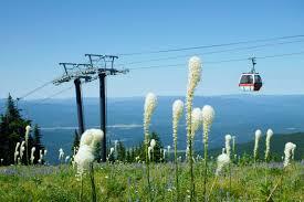 wedding venues in montana 5 epic ski resort wedding venues in montana weddingwire