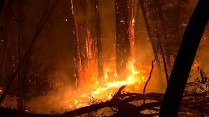 California Wildfire Cat by High Winds Expected To Fan California Wildfires At Least 23 Are