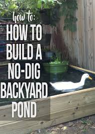 instructions for building a backyard pond with no kit and no