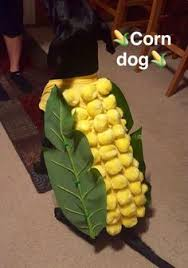 Halloween Costumes Yorkies Cutest Homemade Corn Dog Costume Dog Homemade Corn