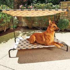 best 25 pvc dog bed ideas on pinterest dog beds dog cots and