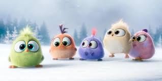 film kartun untuk anak bayi baru menetas bayi burung angry birds bernyanyi bikin gemas