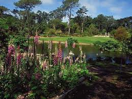 Family Garden Sf From Bison To Archery Mapping 25 Secrets Of Golden Gate Park