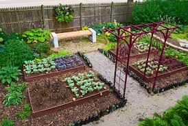 outdoor and patio beautiful backyard vegetable garden with white