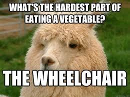 Vegetable Meme - what s the hardest part of eating a vegetable the wheelchair