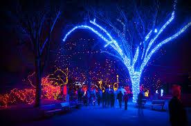 denver zoo lights hours denver zoo christmas lights 2010 dave ingraham flickr