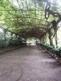 chambre d hote versailles plante interieur ombre pour chambre d hote versailles nouveau