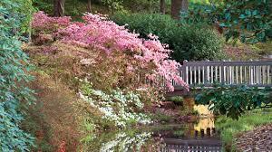callaway gardens pine mountain georgia southern living