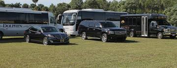 luxury car rental tampa dolphin transportation naples luxury car bus limo airport