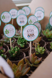 best baby shower favors a succulent shower favor these favors were so and so simple