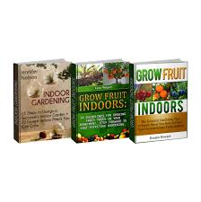 cheap plants for indoor gardening find plants for indoor