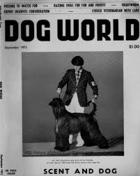 afghan hound good and bad afghan hound times ephemera dog world afghan hound covers 1963 1974